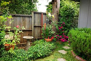 Yard Corner